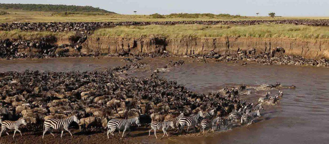 Tanzania best Safari Serengeti
