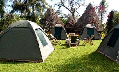 Group camping safaris