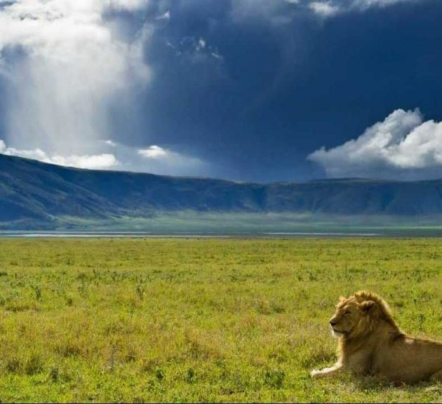Ngorngoro Crater overview
