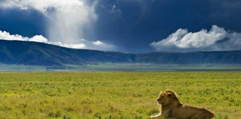 Ngorngoro Crater overview