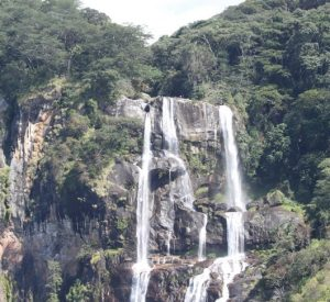 Udzungwa Mountains National Park