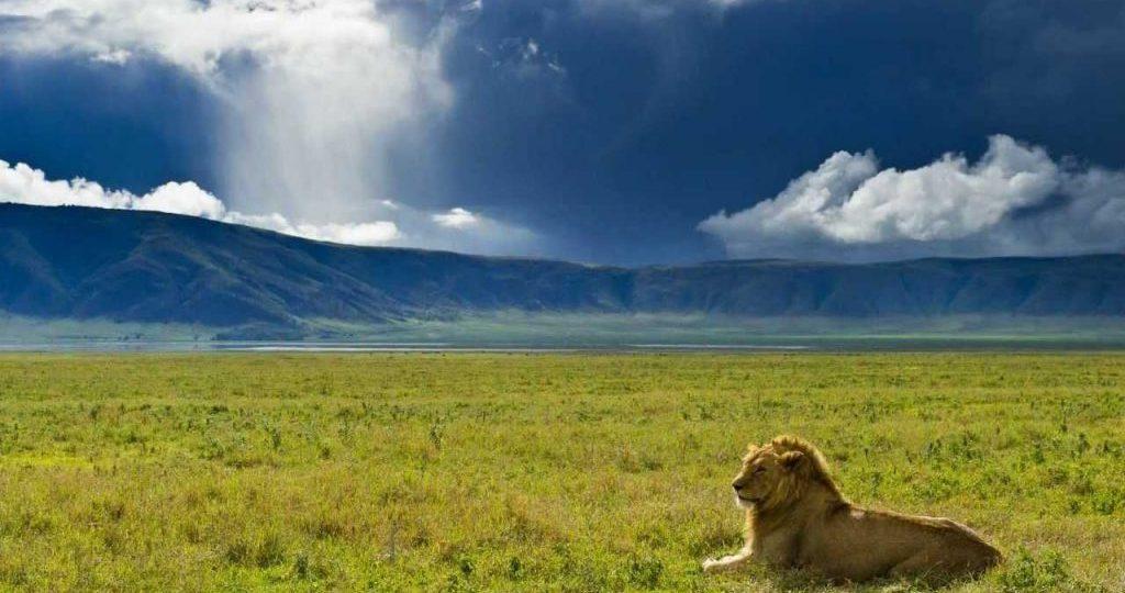 The view of Ngorngoro Crater