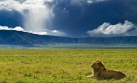The view of Ngorngoro Crater